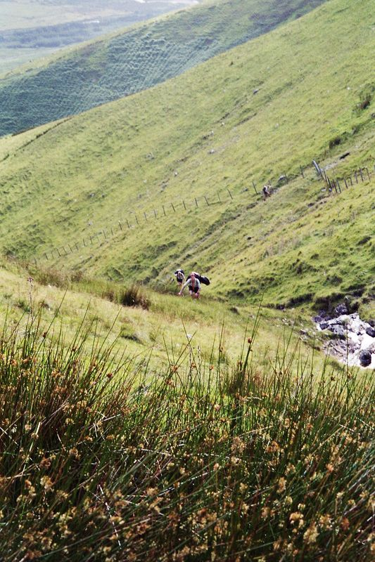 Sippe Aldebaran in Irland 2006_24