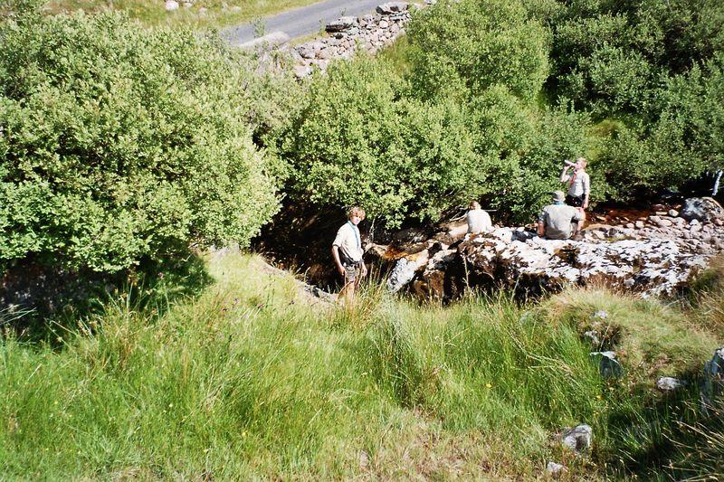 Sippe Aldebaran in Irland 2006_33