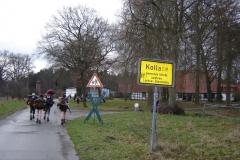 dannenberg (12)