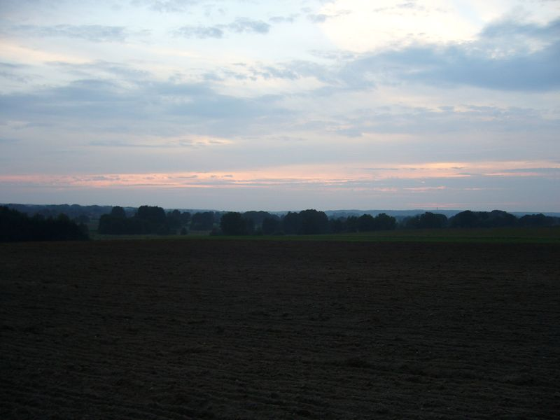 salzhausen (91)