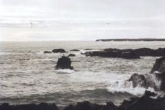Island021